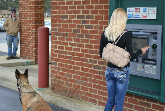 ATM Protection Dogs