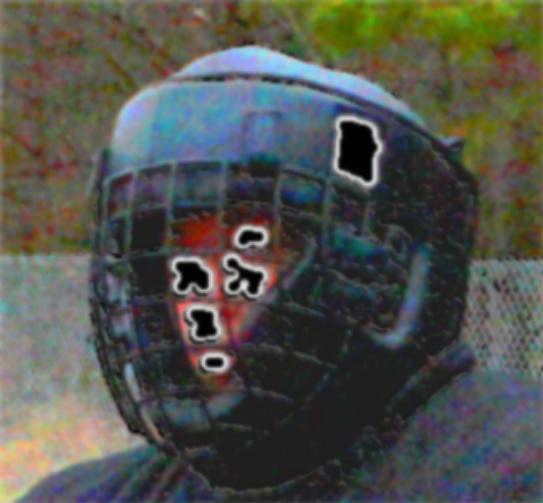 Dog training protection helmet