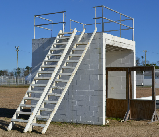 Ladders for dog training.