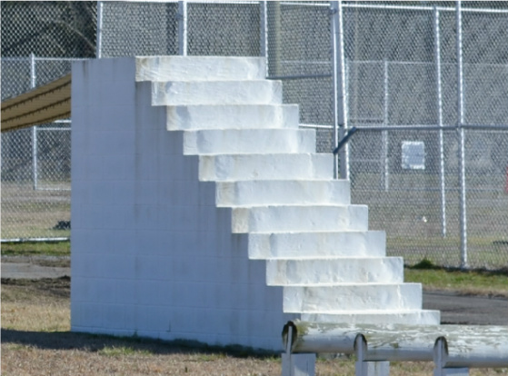 Open stair obstacle course for canines